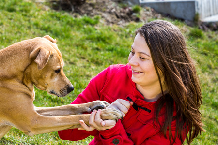 animal woman: A young woman is playing with pets in the garden Stock Photo
