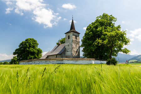 protected plant: View of a gothic church in Ludrova village near Ruzomberok in Slovakia, summer 2015