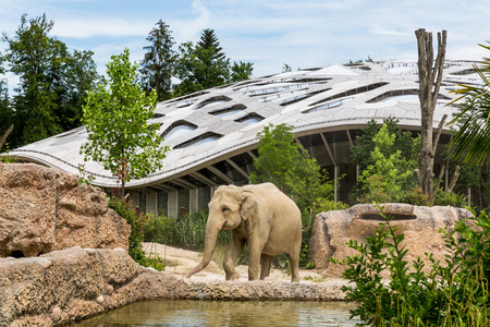 schweiz: ZURICH, SWITZERLAND - JUNE 13, 2015: The new elephant compound in Zurich Zoo on June 13, 2015. The Zurich Zoo supports Kaeng Krachan National Park in Thailand as it protects the animals living there.
