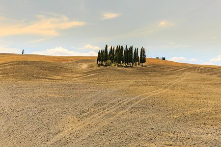 SAN QUIRICO D ORCIA, ITALY - JULY 16, 2016: View of a farm fields in the tuscan region San Quirico d Orcia in Italy on July 16, 2016. This region is popular for tuscan style photographic motives. Stock Photo