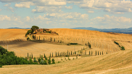 san quirico: SAN QUIRICO D ORCIA, ITALY - JULY 16, 2016: View of a farm house in the tuscan region San Quirico d Orcia in Italy in July 16, 2016. This region is popular for its tuscan style photographic motives.