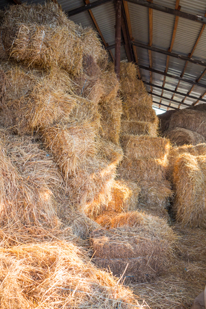 haymow: Hay stacks and bales at farm haylof hangar storage