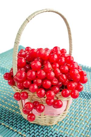 Red berries of guelder rose in small wicker basket on blue underlay