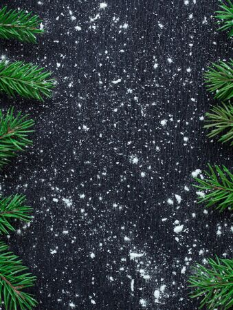 snowbound: Christmas and New Year winter holiday snowbound black space background with green fir tree branches Stock Photo