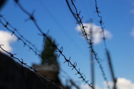 Barbed wire closes blue sky