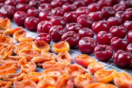 Background pattern of fresh mellow cherry and apricot berries prepared for cooking and sun drying for conservation and preservation