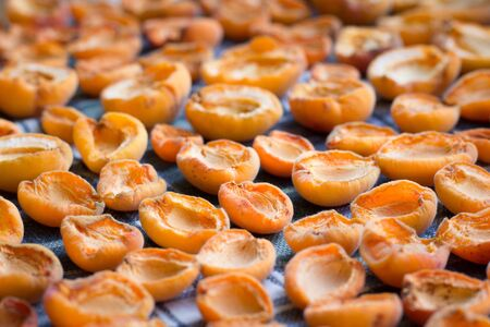 Fresh summer harvest of juicy mellow orange apricot fruits are drying on sun preparing for conservation 免版税图像