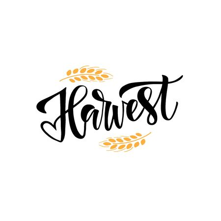 Harvest handwritten black ink lettering. Harvesting season wish calligraphy with decorative wheat spikelet. Crops gathering greeting card inscription. Farming industry poster design element