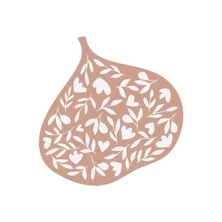 Flat fig hand drawn vector illustration. Modern botanical print Ilustração