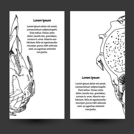 fruit du dragon: Dragon fruit or pitahaya. With text. Vector illustration. Hand-drawn fruit decorative element useful for invitations, scrapbooking, design. Circuit and strokes. Illustration