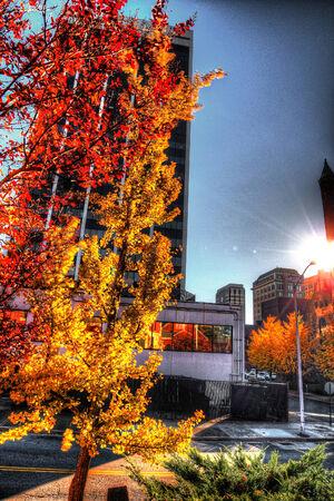 HDR Fall city