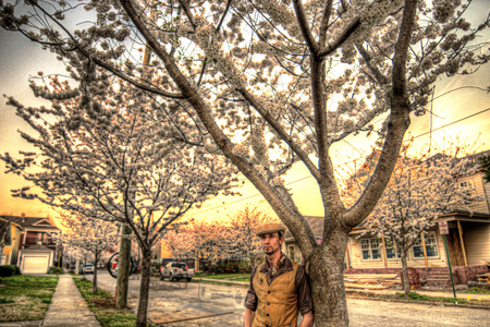 hdr: HDR man standing under Cherry flowers