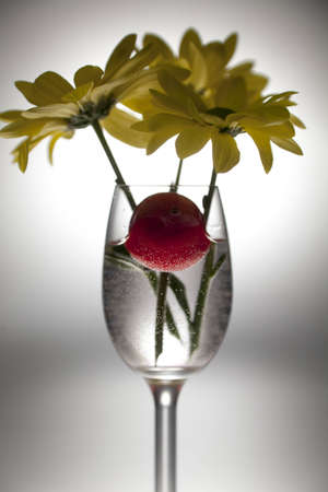 Yellow flower and cherries in a glass on a white background  photo