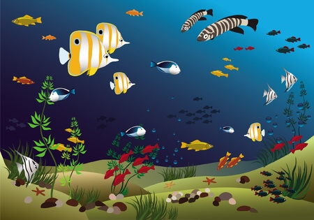 tropical climate: Ocean with beautiful tropical fishes Illustration