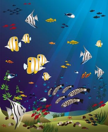 tropische vissen bodem van de oceaan