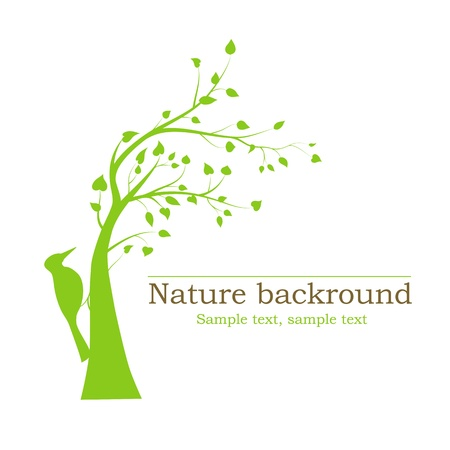 botanical branch: woodpecker on a tree - vector background