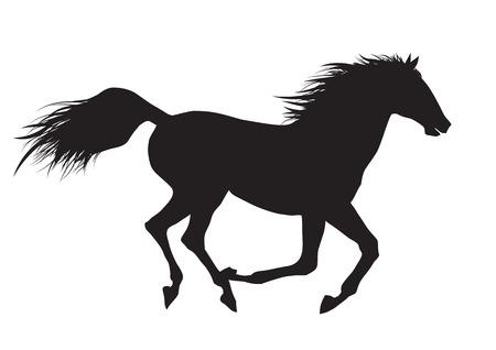 Vector illustration of running black horse
