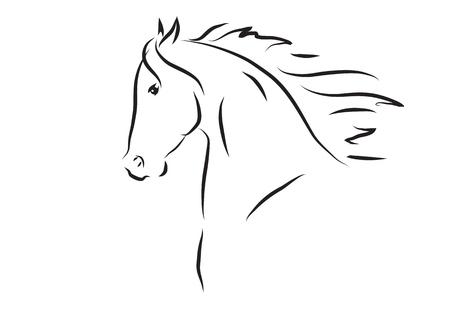 vector illustratie van het paard het hoofd