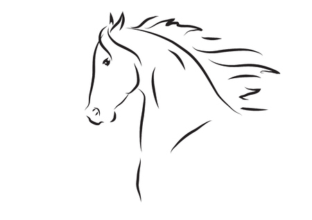 vector illustration of horse head
