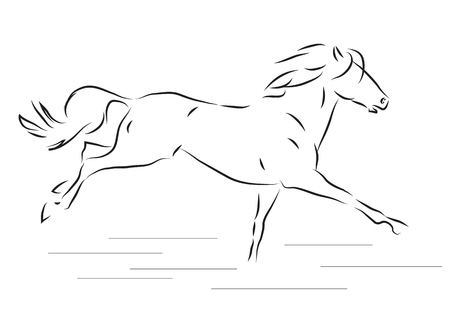 galloping: Sketch of silhouette of galloping horse - vector illustration