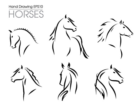 Set of hand drawn vector horses silhouettes illustration. Vectores