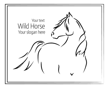 Hand drawn vector illustration of a wild horse Illustration