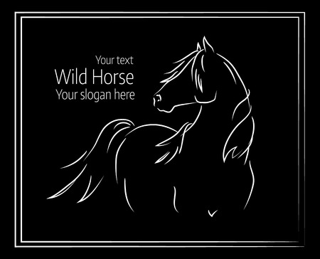 Hand drawn vector illustration of a horse on a black background
