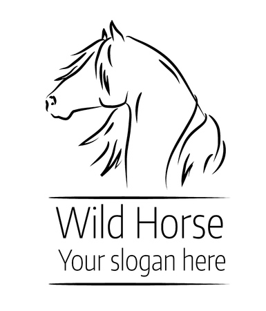Hand drawn vector illustration of a wild horse head