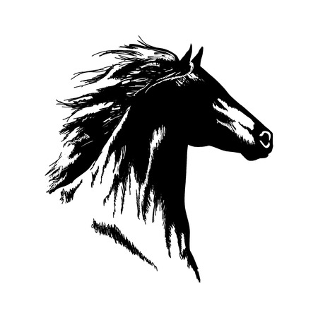 Hand drawn horse head black and white vector isolated design.