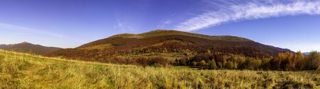 Mountain panorama in autumn in the rays of the sunset. Mount Carynska mewdow - Bieszczady National Park - Poland