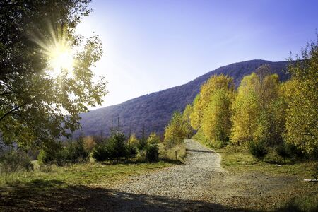 Mountain path in autumn in the rays of the sunset. Bieszczady mountains in Poland.