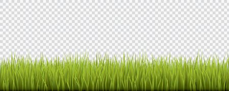 Fresh realistic green grass - vector illustration