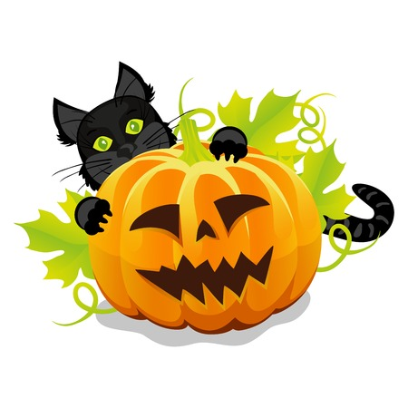 evil halloween pumpkin and black cat vector Vector
