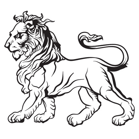 lion tail: The vector image Heraldic lion. Vector.