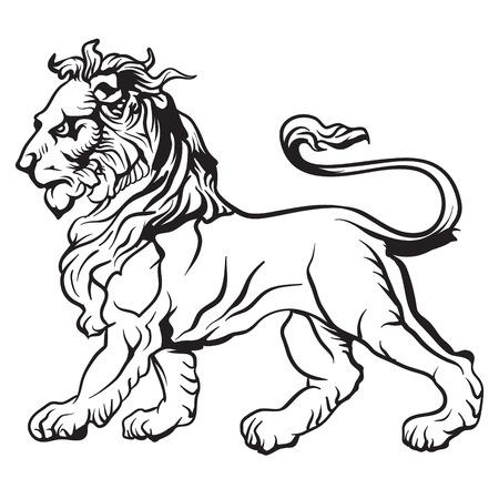 heraldic lion: The vector image Heraldic lion. Vector.