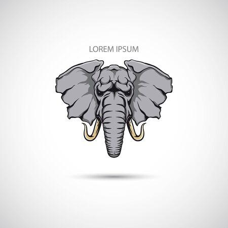 elephant head: The vector image Label with the elephant head. Vector.