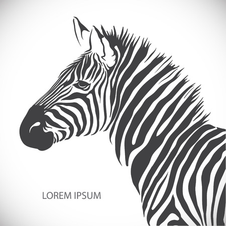 zebra heads: The vector image Label with the head of a polar bear. Vector Illustration