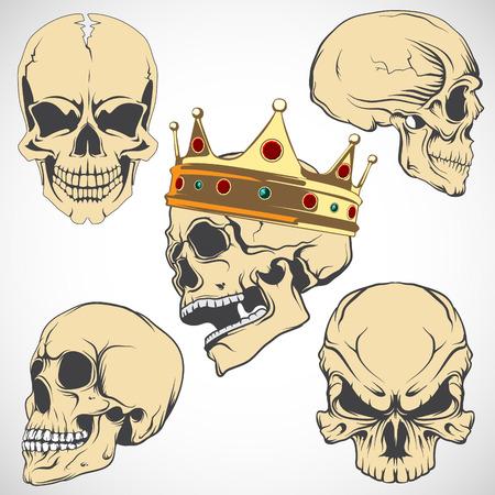 The vector image Set of vector skulls. Illustration
