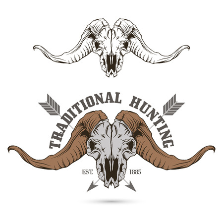 animals horned: The vector image Sheep skull. Hunting symbol. Vector.