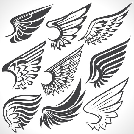 wings icon: The Vector image of Big Set sketches of wings Illustration