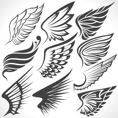 dessin au trait: L'image vectorielle Big Set croquis d'ailes
