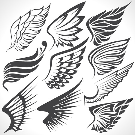outline drawing: The Vector image of Big Set sketches of wings Illustration