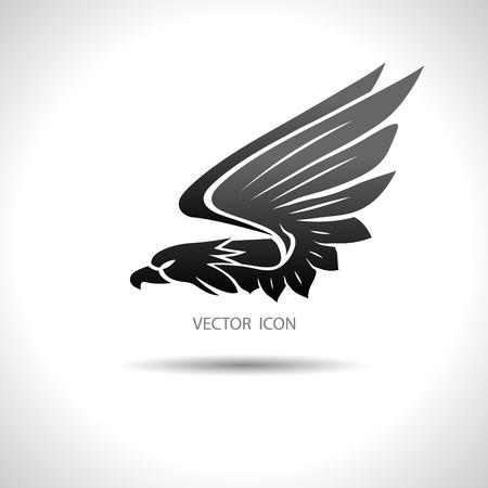halcones: La imagen del vector del icono con un �guila sobre un fondo blanco.