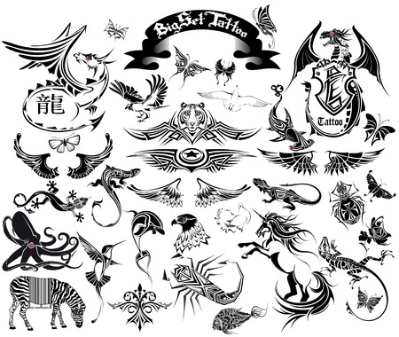 dragon fish: The Vector image of BIG SET TATTOO Illustration