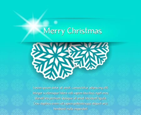 symmetrical design: The vector image Christmas card with snowflakes