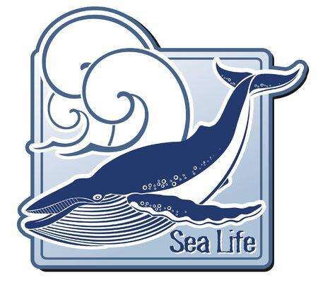 ballena azul: La imagen del vector de la etiqueta con una ballena