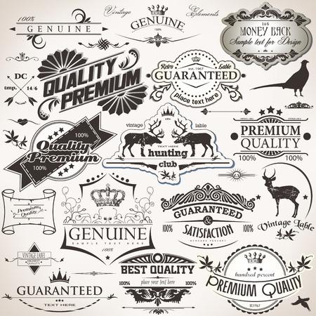 The vector image of  Set of vintage design elements 일러스트