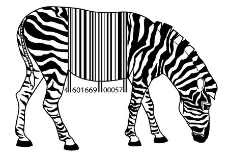 The vector image of  zebra