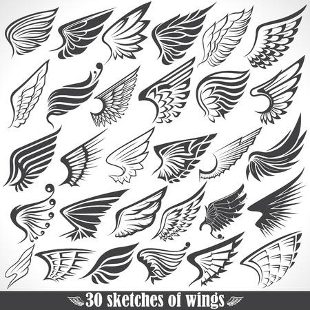 De vector afbeelding van Big Set schetsen van de vleugels Stock Illustratie