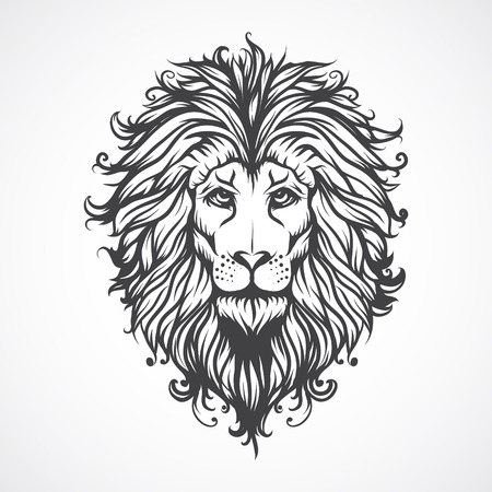 lion head: Lions Head. Illustration